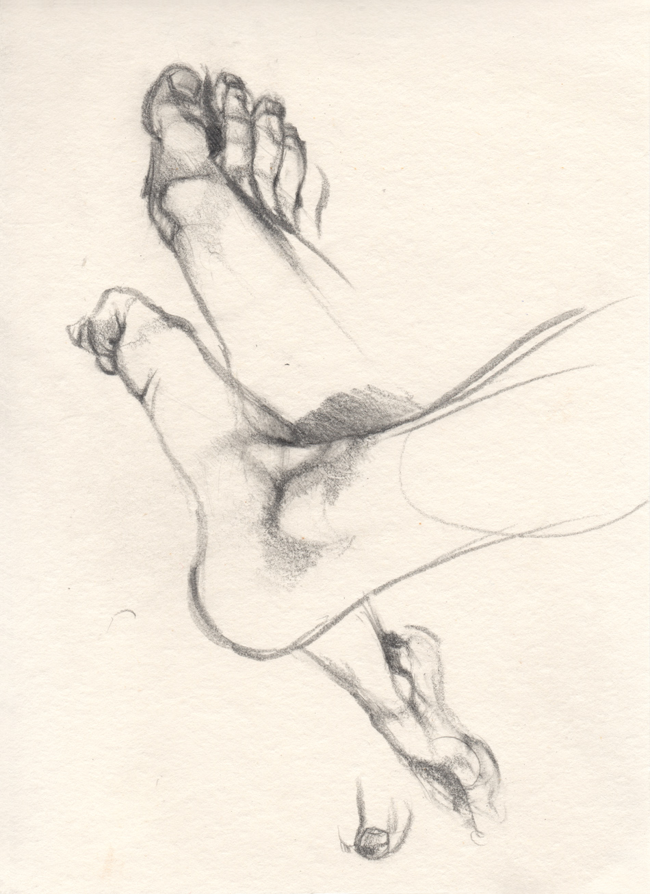 The studies of my foot